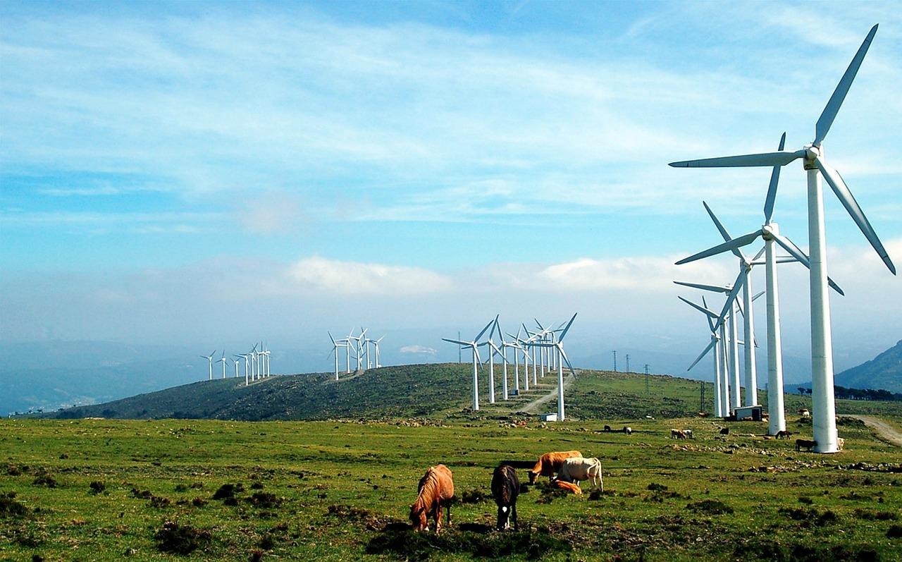再生可能エネルギー 風力